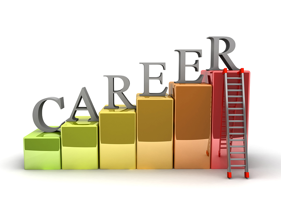 describing my career path and the next steps in my life The career direct guidance system makes a great gift for those who want to understand who they are and what career path my life career next steps on how.
